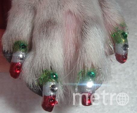 """Креативные стрижки. Акриловые ногти со стразами. Фото Ксения Пашина, """"Metro"""""""