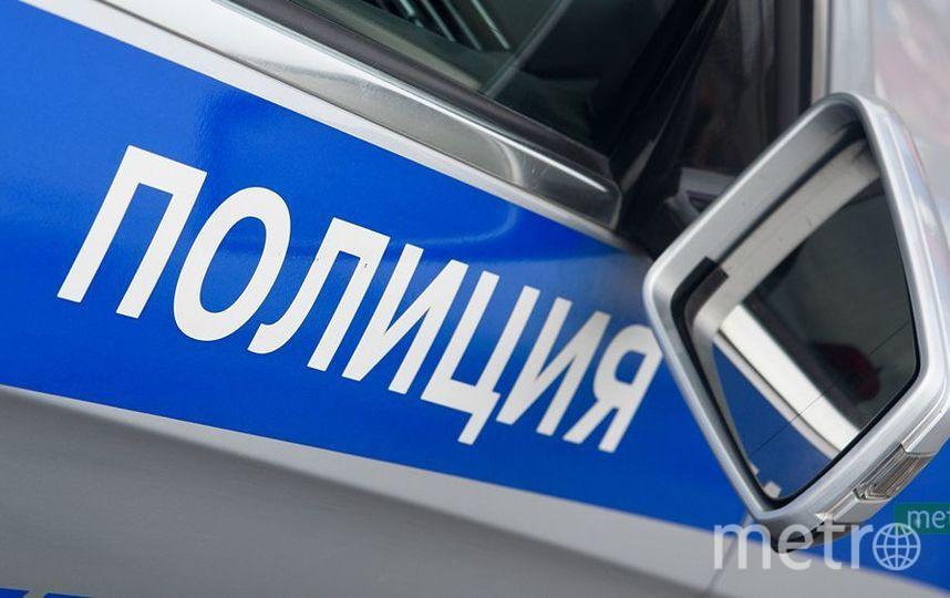 """Патрульный автомобиль полиции. Фото Василий Кузьмичёнок, """"Metro"""""""