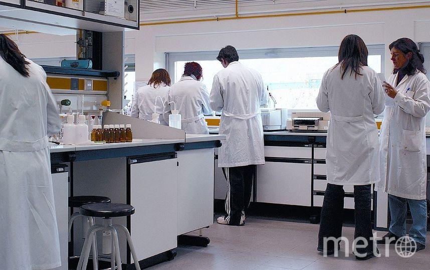 Учёные в лаборатории. Фото Wikipedia