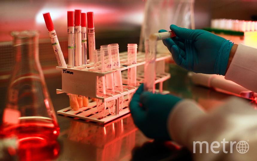 Учёные МГУ изобрели лекарство от старости. Фото Getty