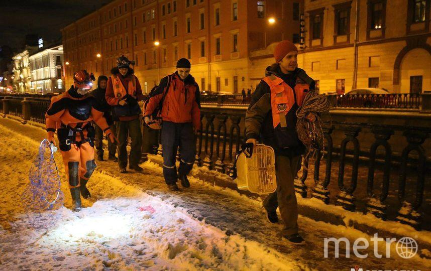 Фото: Павел Каравашкин, megapolisonline.ru / Мегаполис.