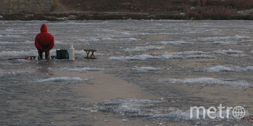 Двух человек спасли из пруда в Москве. Фото Getty