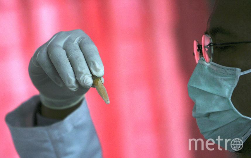 Вкурином мясе отыскали опасные бактерии иантибиотики