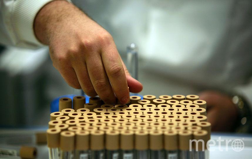 """Учёные """"воскресили"""" ДНК человека, умершего сотни лет назад. Фото Getty"""
