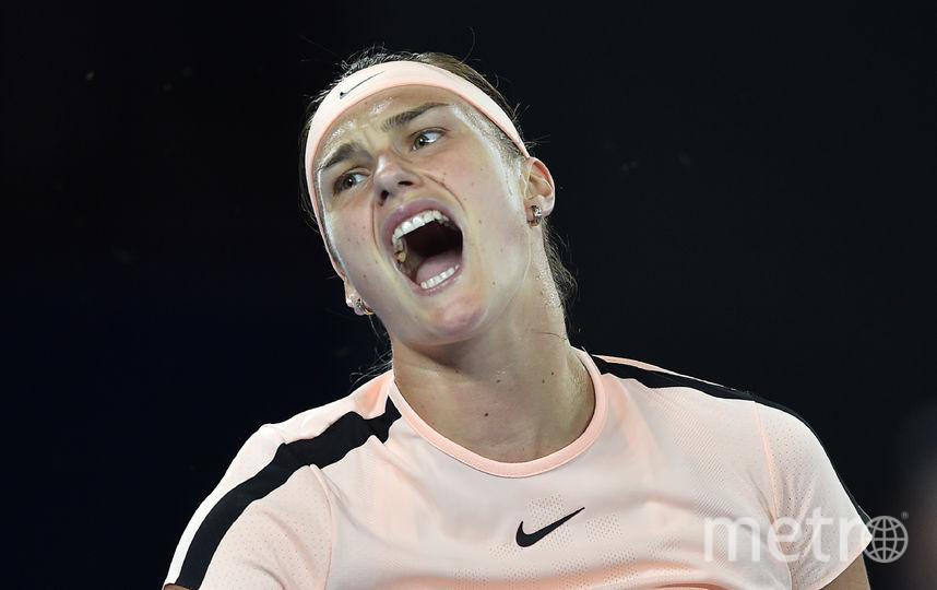 «Чайка накорте». ВАвстралии белорусскую теннисистку затравили из-за стонов
