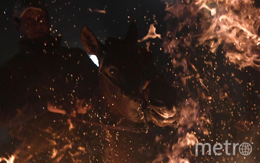 """Фестиваль """"Люминариас"""". Фото AFP"""