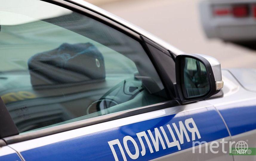 Полиция ищет машину с похищенной в Новой Москве девочкой. Фото Василий Кузьмичёнок