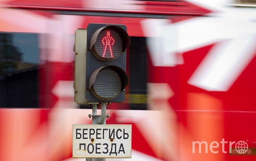 """""""Аэроэкспресс"""". Фото Василий Кузьмичёнок, """"Metro"""""""