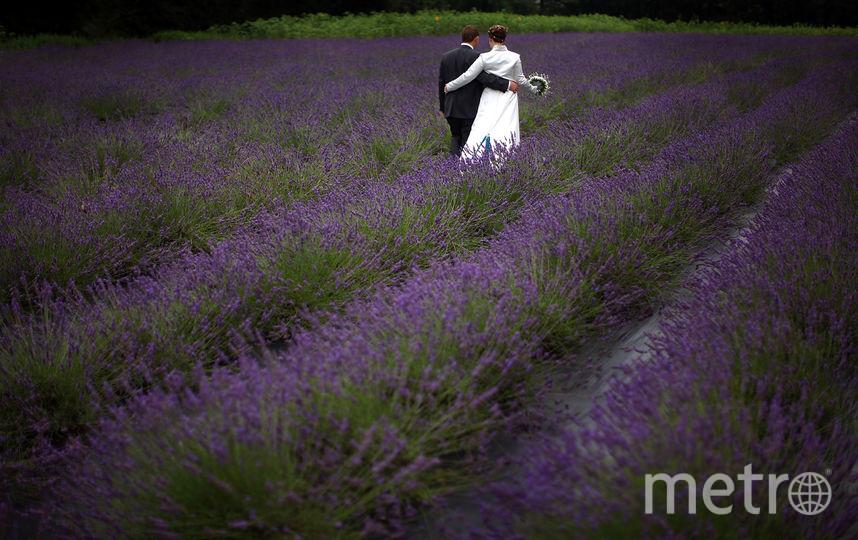 Депутаты хотят приравнять сожительство к официальным бракам. Фото Getty