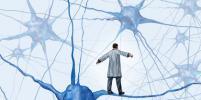 Учёные нашли кладовую с запчастями для мозга