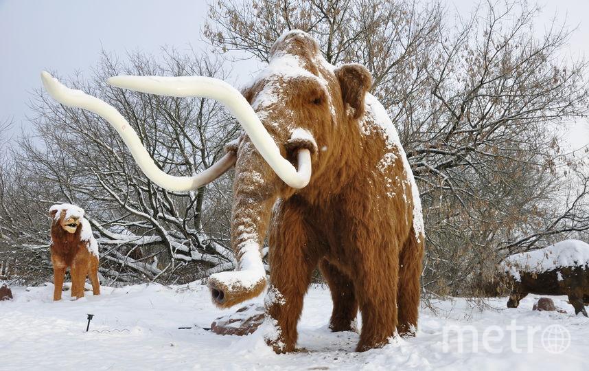Фигура мамонта. Фото Пресс-служба парка.
