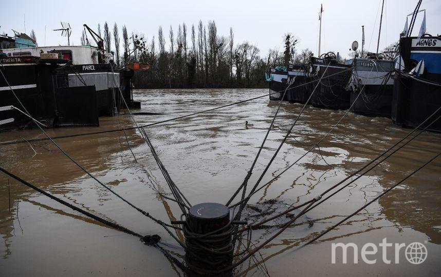 Наводнение в Париже привело к закрытию музеев и прекращению круизов по Сене. Фото AFP