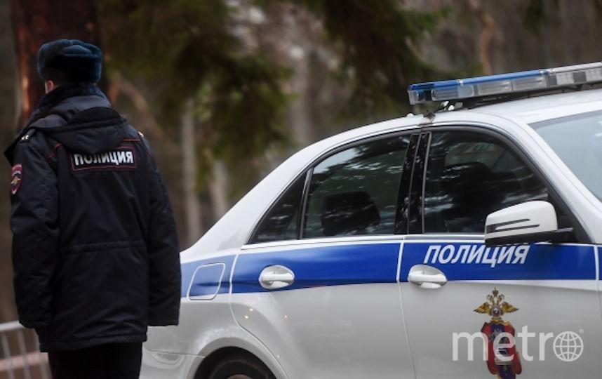 В столицеРФ полицейская машина сбила пенсионерку насобачьей упряжке