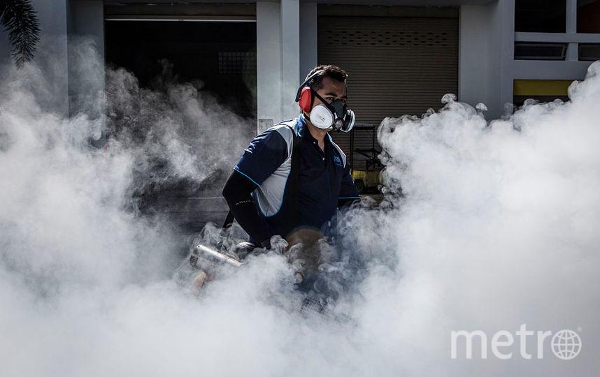 В Турции пытаются остановить распространение вируса Зика. Фото Getty