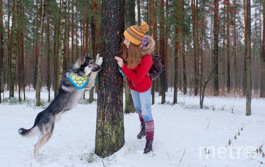 """В парке «Сосновка» можно часто встретить горожан с собаками. Не все знают, что официально выгул четвероногих здесь запрещён. Фото Алена Бобрович, """"Metro"""""""