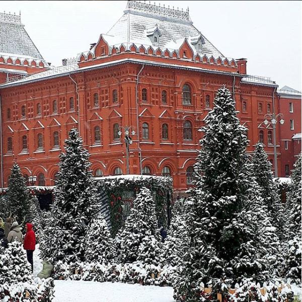 Скриншот instagram.com/aelavrenova/?hl=ru.