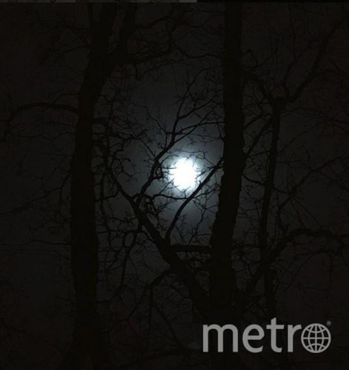Полная Луна уже заворожила полмира своим ярким светом. Луна в Ванкувере. Фото https://www.instagram.com/emmaleighamunro/