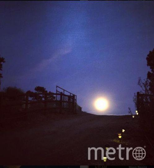 31 января произойдет полное лунное затмение. Полная Луна уже заворожила полмира своим ярким светом.