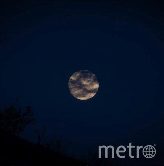 31 января произойдет полное лунное затмение. Полная Луна уже заворожила полмира своим ярким светом. Фото https://www.instagram.com/dlphotopdx/