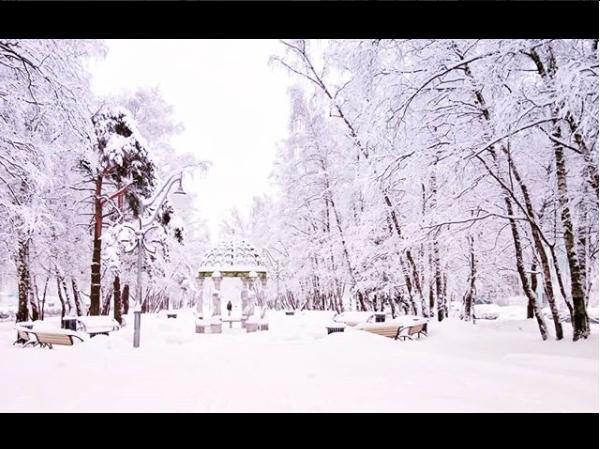 Скриншот instagram.com/allagalitskaya/?hl=ru.