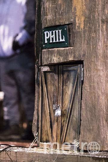 Нора сурка Фила. Фото AFP
