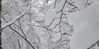В Москве будет ещё больше снега: репортаж из Instagram