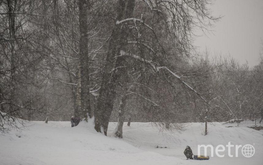"""В Петербурге жители любуются красивым снегопадом. Фото Святослав Акимов., """"Metro"""""""