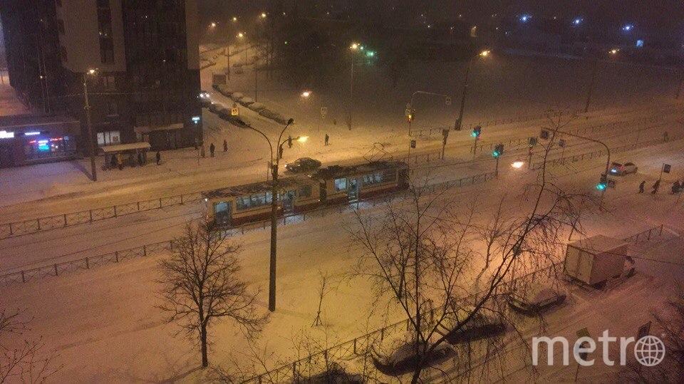 На Ириновском стоят трамваи. Фото vk.com