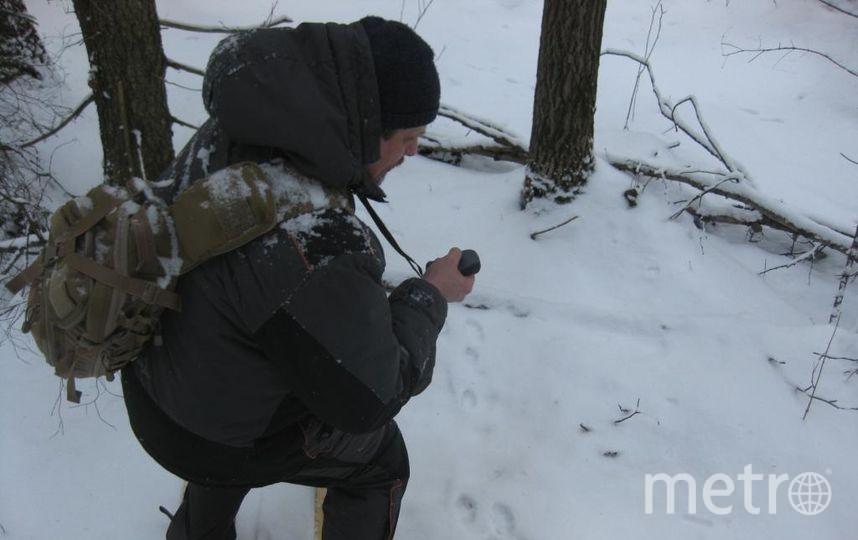 комитета по природопользованию. Фото http://gov.spb.ru