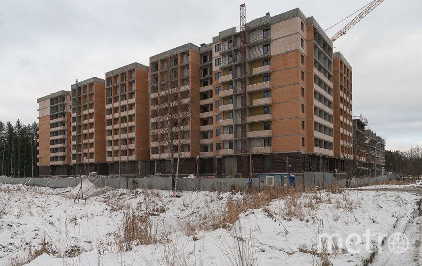 ЖК Ломоносовъ возводится в тихом пригороде - вокруг лесной массив, город в комфортной удаленности.