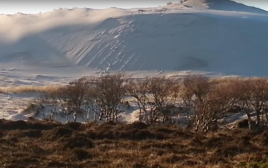 Снег в пустыне Сахара. Фото Скриншот Youtube
