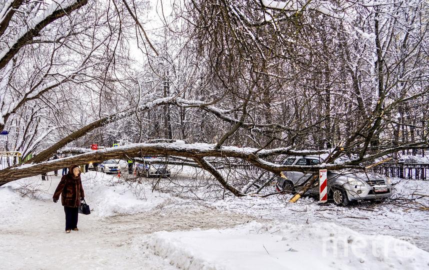 3 и 4 февраля на Москву обрушился мощный снегопад. Фото AFP