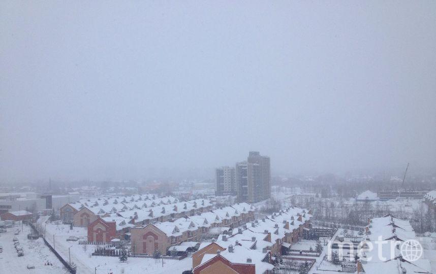 Раменское, Московская область. Фото Екатерина Аксенова