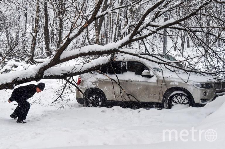 Снегопады в Москве. Фото AFP