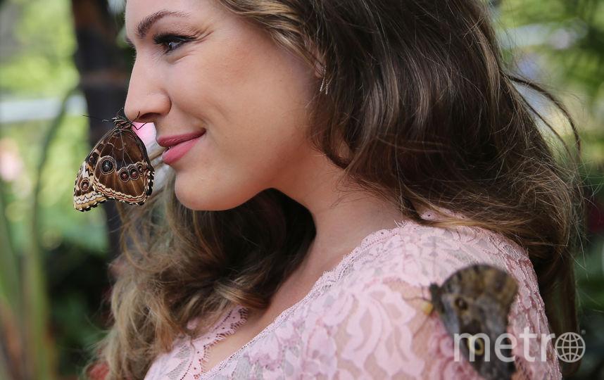 Келли Брук. Фото Getty