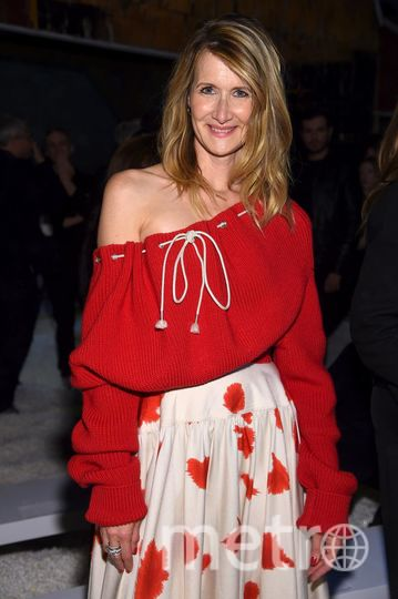 Звезды на показе Calvin Klein. Лора Дерн. Фото Getty
