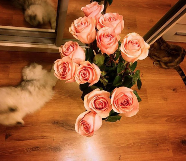 Букет ко Дню святого Валентина. Фото Instagram @nastenka_t_sur