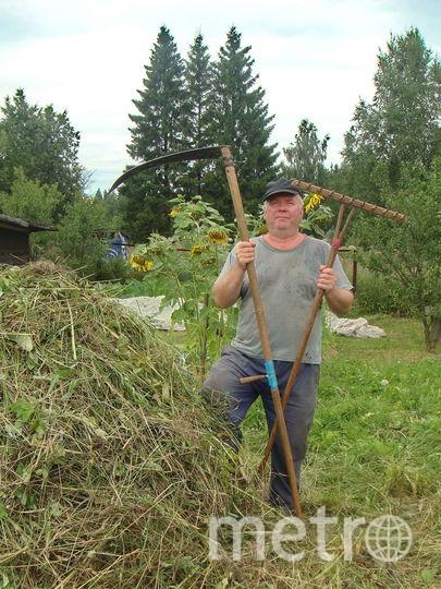 """Вот такое """"оружие"""" для борьбы с травой мне приходится применять в летний период на даче. Фото Юрий Петрусев"""