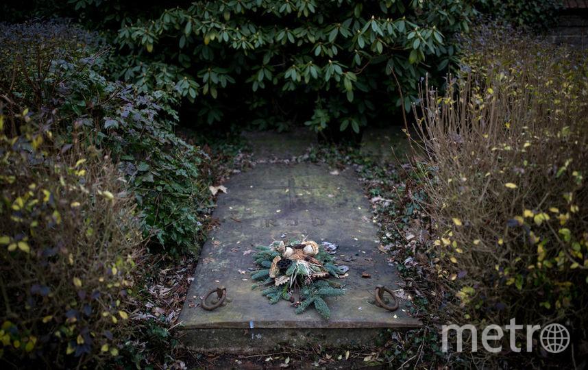 Похороненная заживо бразильянка кричала и пыталась выбраться из гроба, но люди проходили мимо. Фото Getty