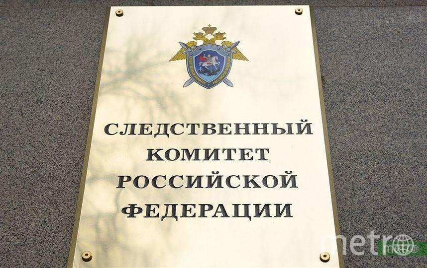 СК проводит проверку по факту массового отравления воспитанников в детском саду в Москве. Фото Василий Кузьмичёнок