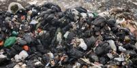 В Мозамбике куча мусора обвалилась на жилые дома и убила 17 человек – фото