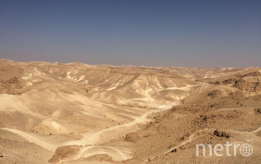 Шесть дней провели в пустыне Негев пятеро петербургских путешественников. Фото Андрей Сергеев