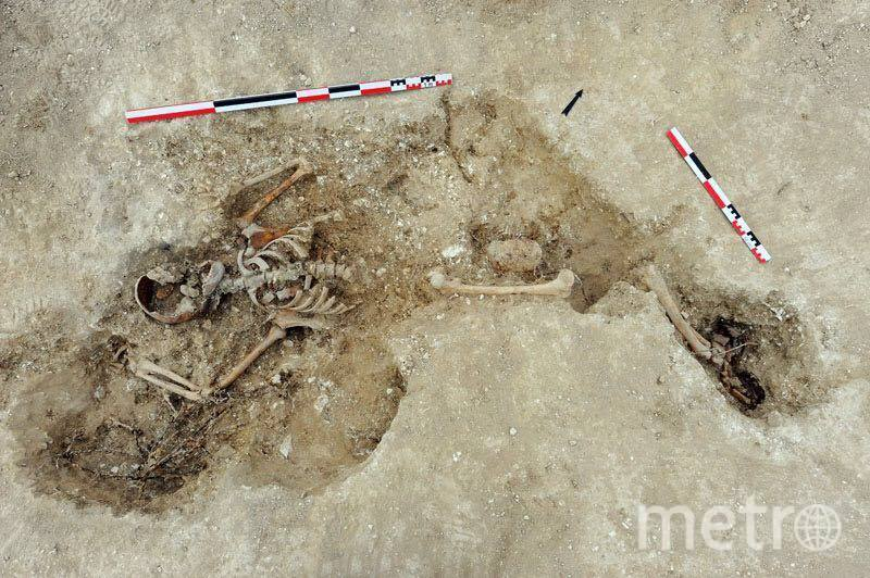 Останки нашли всего в 30 сантиметрах под землёй. Фото предоставлено Пьером Малиновским