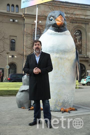 Хавьер Бардем рассказал о путешествии в Антарктиду и сфотографировался с пингвином прямо в Берлине. Фото Getty
