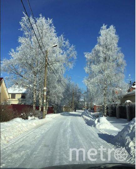 Фото морозного Петербурга делятся горожане. Фото https://www.instagram.com/valentina.iniaeva/