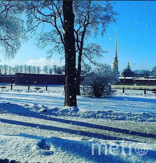 Фото морозного Петербурга делятся горожане. Фото https://www.instagram.com/darya_happy/