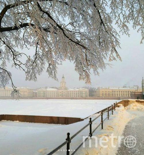 Фото морозного Петербурга делятся горожане. Фото https://www.instagram.com/mashaneb/