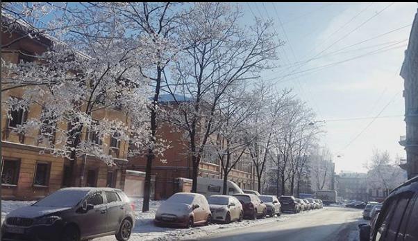 Фото морозного Петербурга делятся горожане.