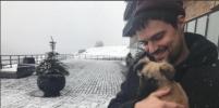 Российские актёры выступили против убийства бездомных собак