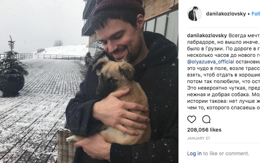 Данила Козловский рассказал в Сети историю о том, как подобрал бездомного щенка. Фото Instagram.com | danilakozlovsky